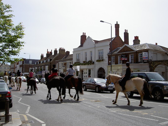 The horses from Wimbledon Village Stables passing through Wimbledon Village