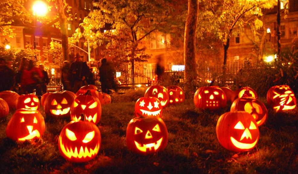 pumpkins-985x575